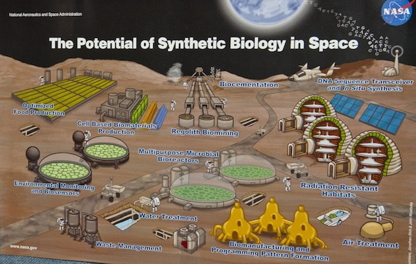 potential of syn biol in space